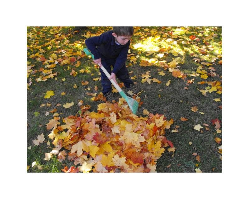 Reese raking
